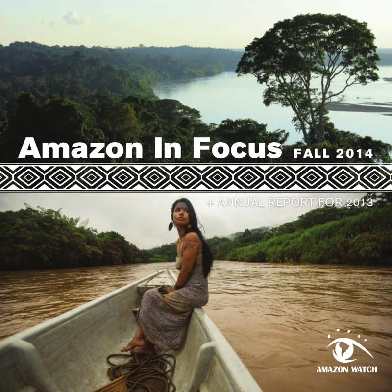 2014 Amazon in Focus