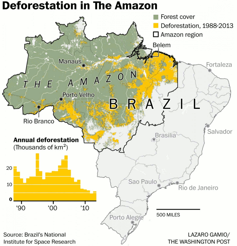 essays on deforestation of the amazon