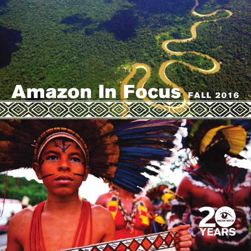 2016 Amazon in Focus