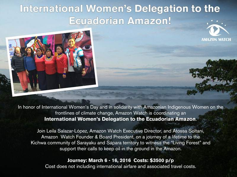 Join Amazon Watch on an International Women's Delegation to the Amazon