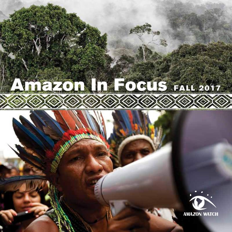 2017 Amazon in Focus