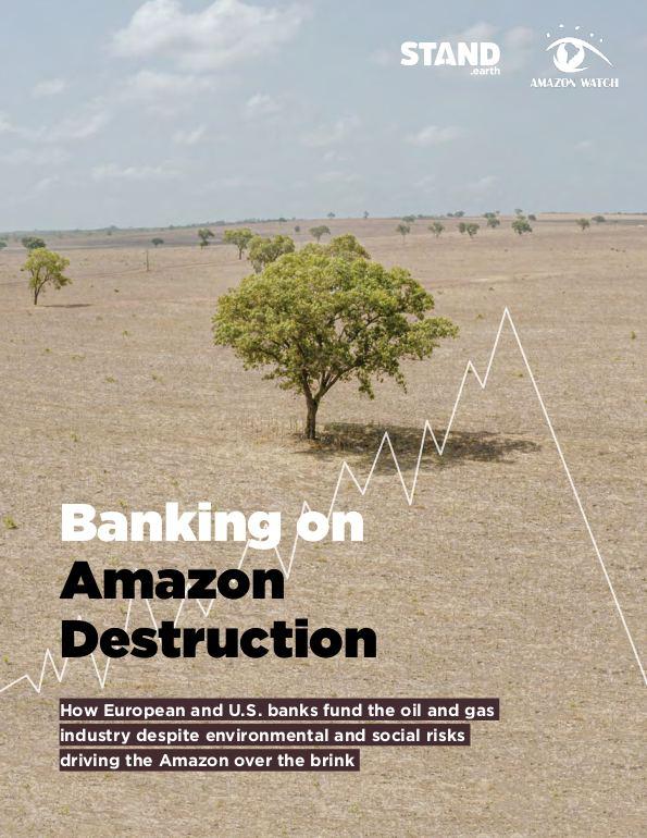 Banking on Amazon Destruction