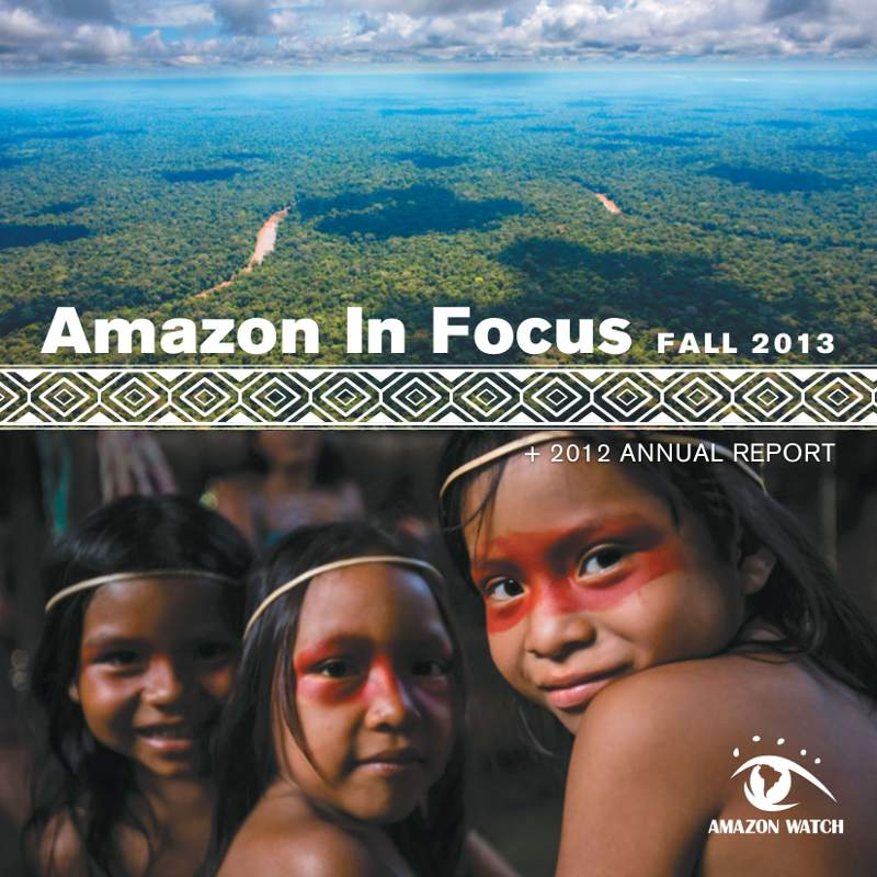 2013 Amazon in Focus