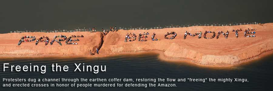 Freeing the Xingu