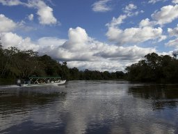 Brazil Green Lights Amazon Dam Disregarding Environmental Laws and Local Opposition