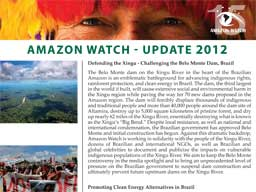 Amazon Watch's 2012 Priorities