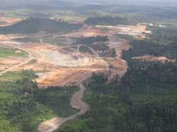 Belo Monte Halted: Norte Energia's Lies and Our Demands to Reverse the Damage Done