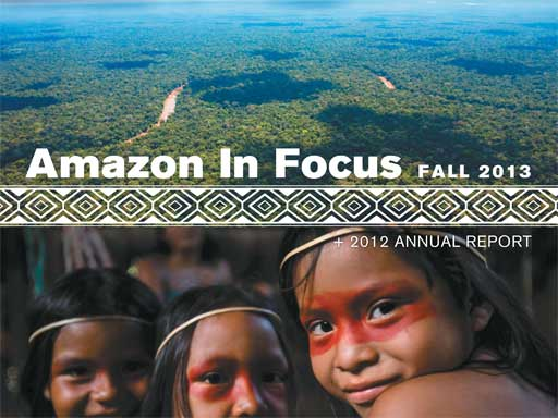 Amazon in Focus 2013