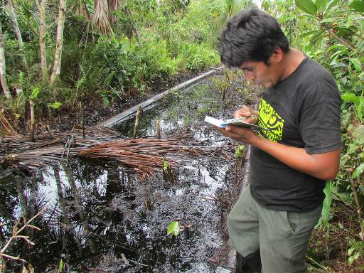 Severe Oil Contamination Found in the Largest National Reserve in Peru