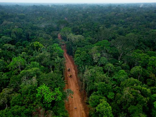 Beijing, Banks and Barrels: China and Oil in the Ecuadorian Amazon