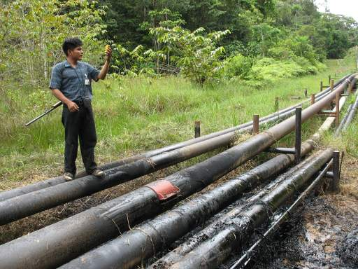 "Peru's Amazon at Risk: ""21st Century Oil Firms with 18th Century Laws?"""
