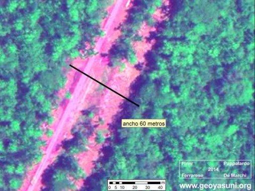 "AMAZON WATCH » Oil Company Has Built ""Secret"" Road Deep ..."