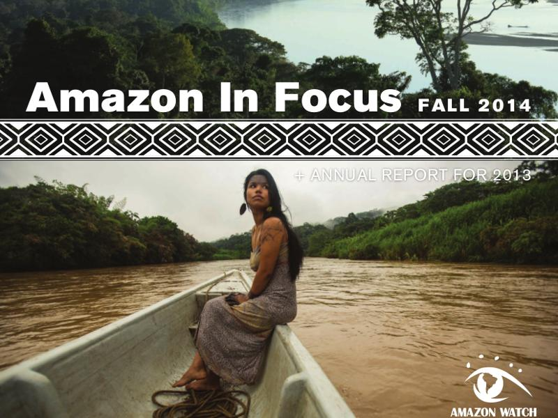 Amazon in Focus 2014