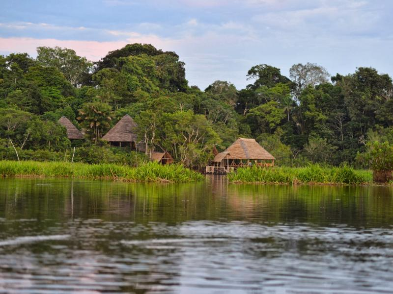 Amazon Indigenous Land Loss Threatens Climate, Says Study