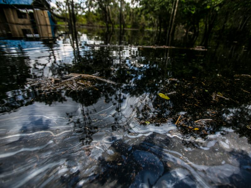 Oil in the Peruvian Amazon: A 2015 Panorama