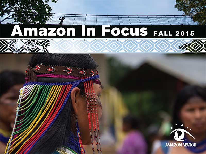 Amazon in Focus 2015