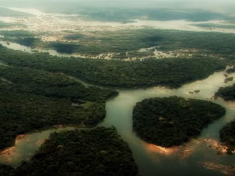 Why a Paris Climate Treaty Needs To Protect the Amazon