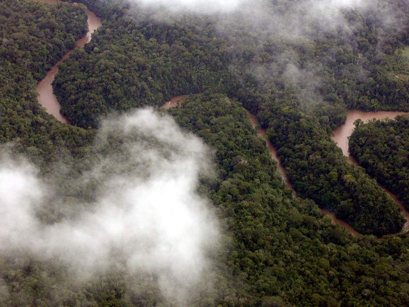 Drilling Towards Disaster: Ecuador's Aggressive Amazonian Oil Push