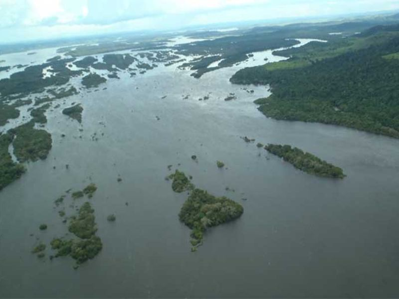 Dams Threaten Future of Amazonian Biodiversity, Major New Study Warns