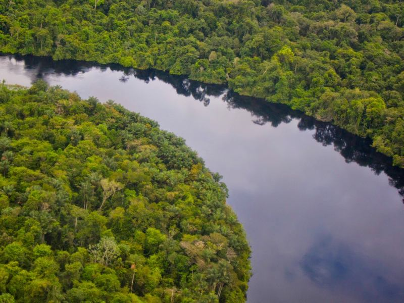 Brazilian Government Cancels Mega-dam on the Amazon's Tapajós River