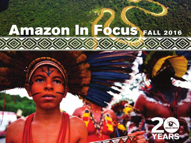 Amazon in Focus 2016