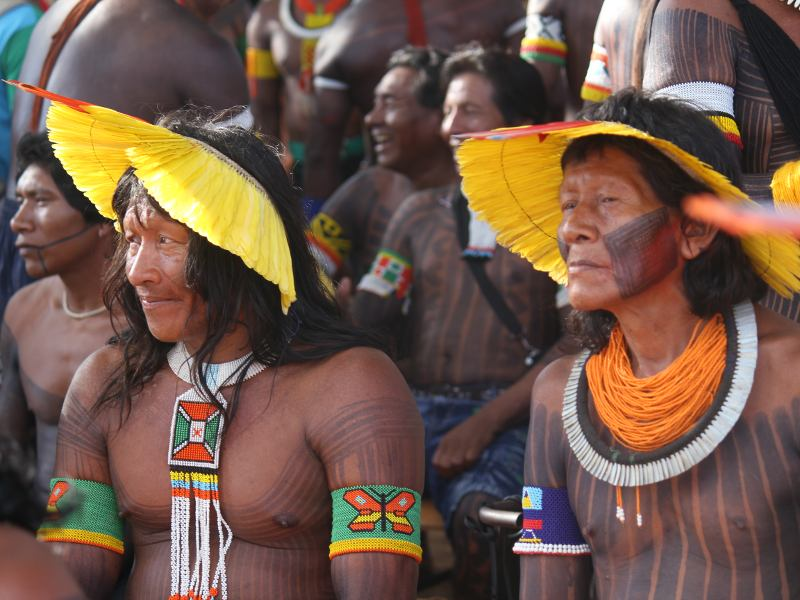 Indigenous Rights and Territories Under Attack in Brazil