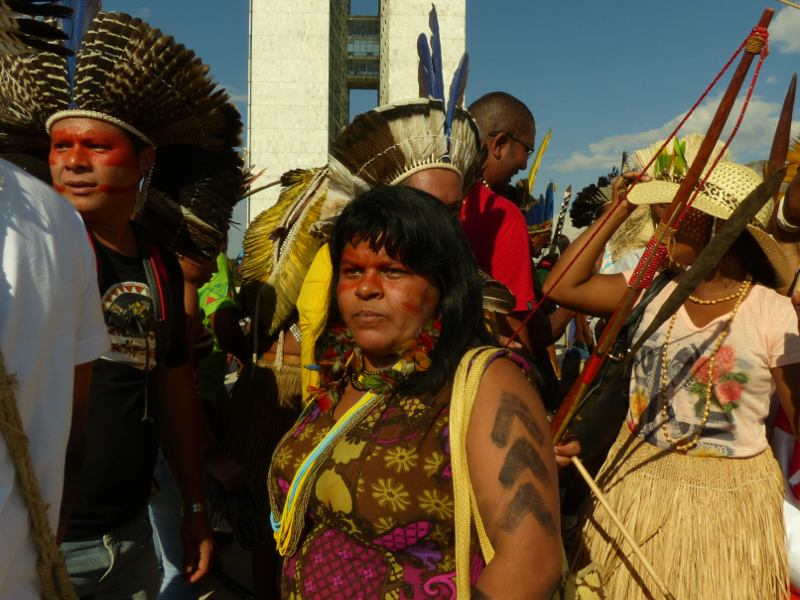 UN Experts Slam Brazilian Government's Attacks on Indigenous Rights