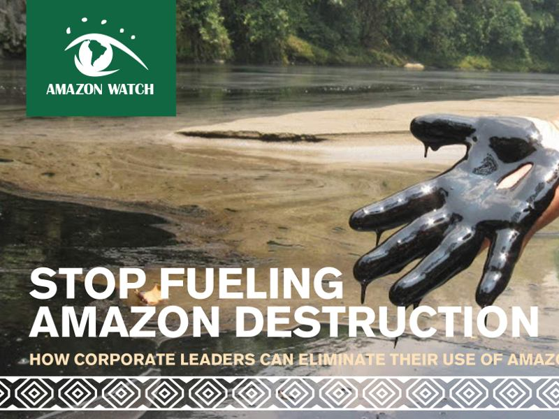 Stop Fueling Amazon Destruction