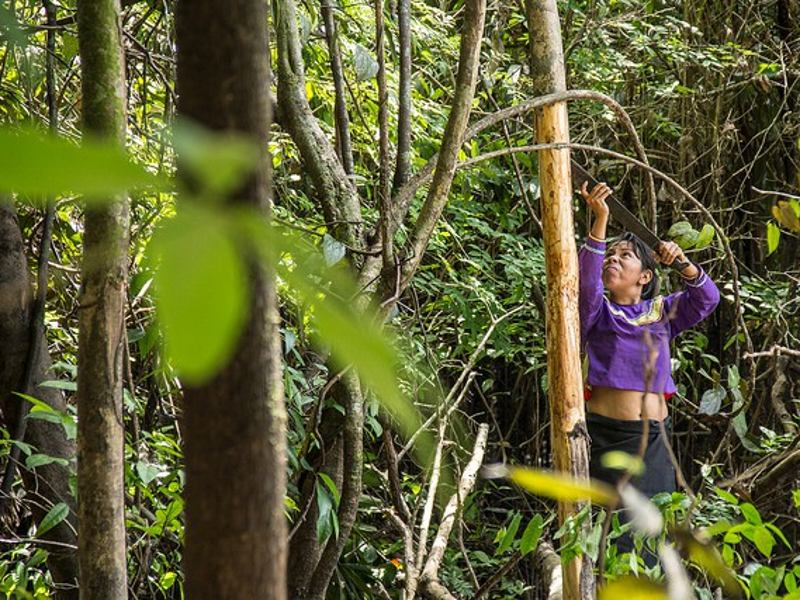 Long Road Ahead To Indigenous Land and Forest Rights in Peru