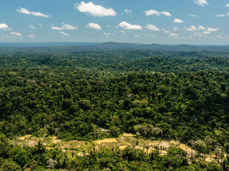 Brazil Backtracks on Plan to Open up Amazon Forest to Mining