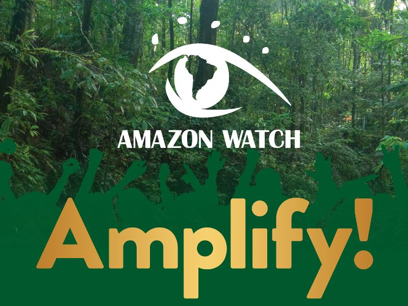 Amplify! A Celebration of Voices from the Amazon