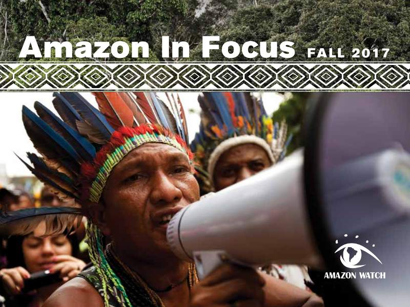 Amazon in Focus 2017