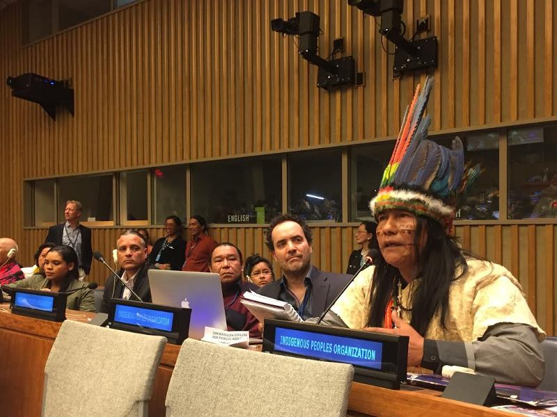Defending Indigenous Lands, Territories, and Resources at the UN