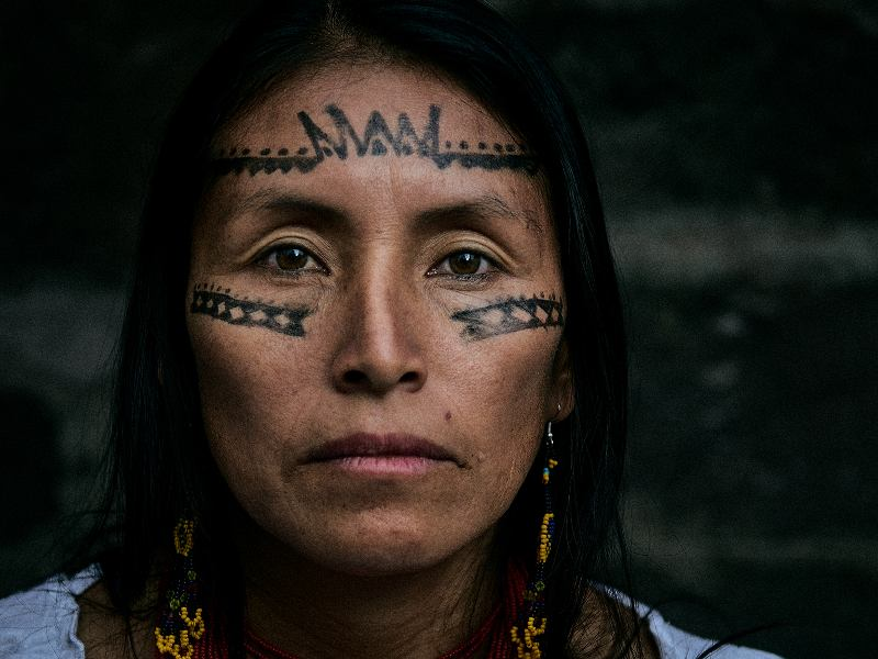 Earth Defenders Risk Life and Limb to Protect the Amazon Rainforest