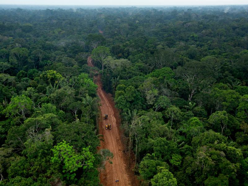 Climate Leadership Means Keeping Fossil Fuels in the Ground in Tropical Forests and Beyond