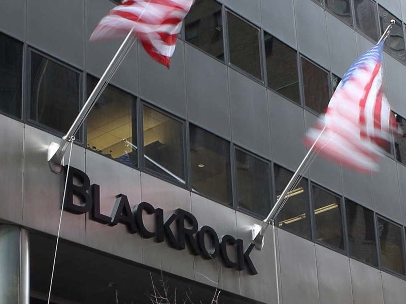 Throwing Stones at BlackRock's Fossil Fuel Investments