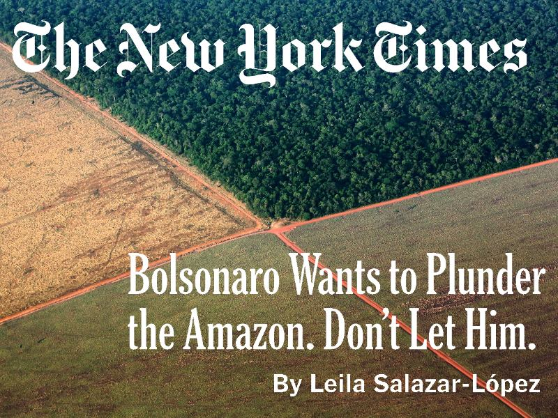Bolsonaro Wants to Plunder the Amazon. Don't Let Him.