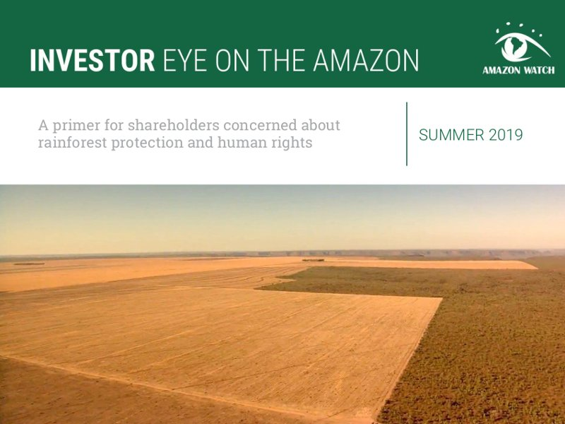 Investor Eye on the Amazon