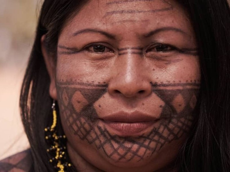 Forest Defenders Increasingly Come Under Fire in Brazil's Lawless Amazon