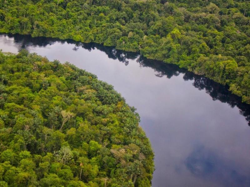 Drilling in the Amazon? Global Financiers Say Yes