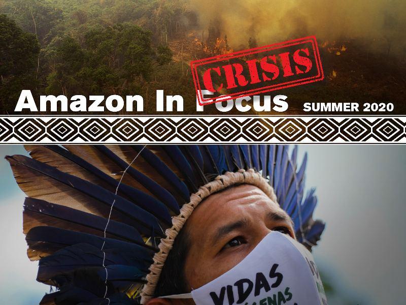 2019 Amazon in Focus