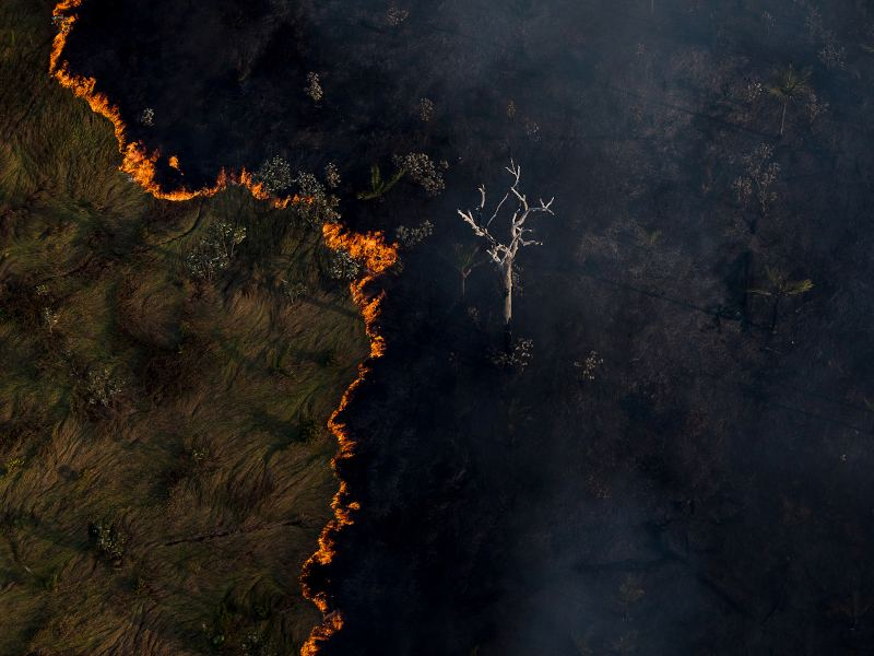 The Amazon's Burning Season Is a Call to Action