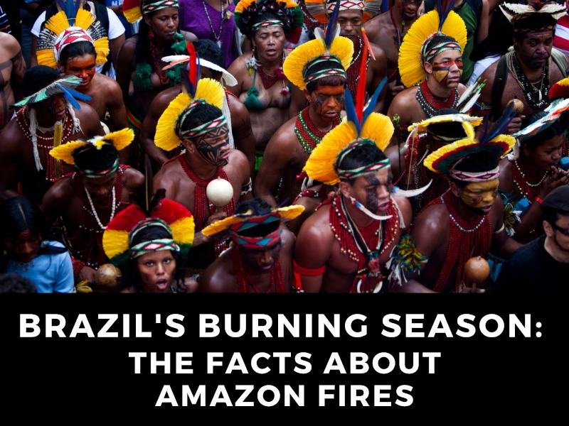 Brazil's Burning Season: The Facts About Amazon Fires