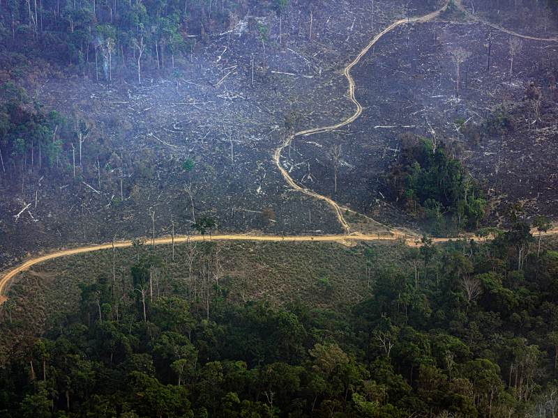 Overflight Uncovers Environmental Destruction of Munduruku Indigenous Territory in the Brazilian State of Pará