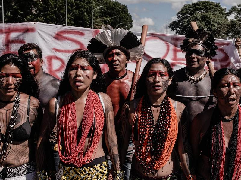 U.S. Firms Continue to Fund Network of Destruction in the Amazon