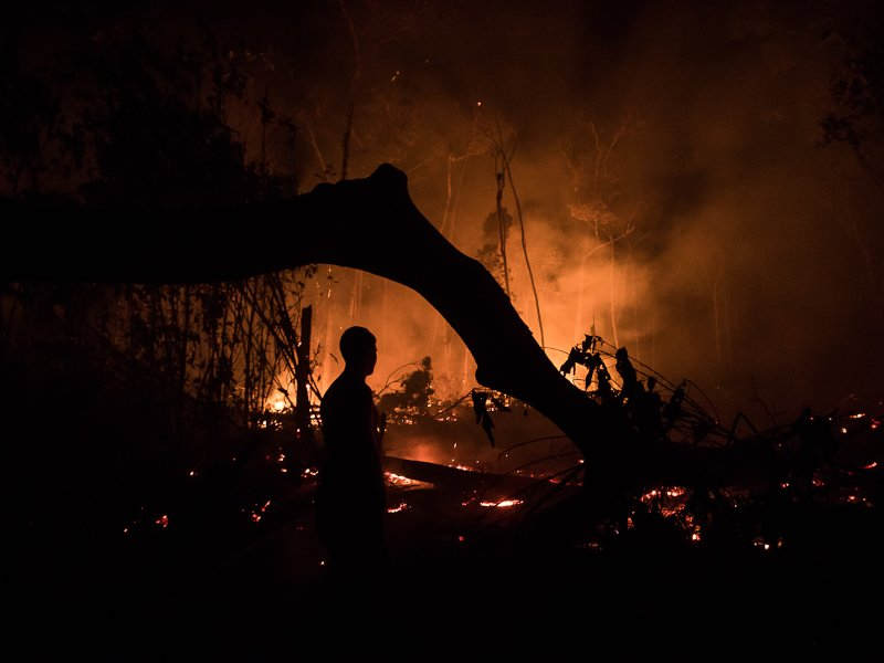 Resisting Another Record-Breaking Year of Deforestation and Destruction in the Brazilian Amazon
