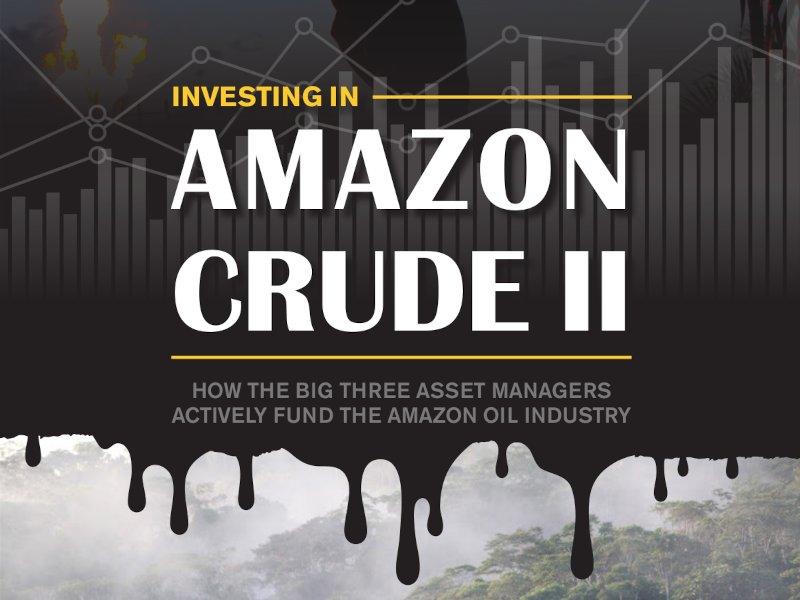 Investing in Amazon Crude II