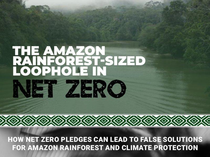 The Amazon Rainforest-Sized Loophole in Net Zero