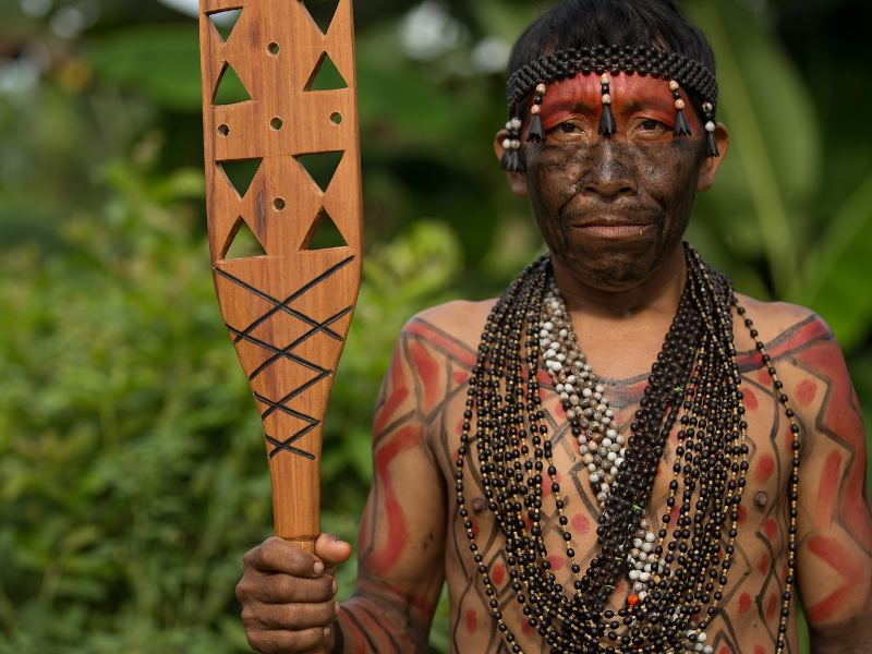 Call on the Biden-Harris Administration to Take Urgent Action for the Amazon!