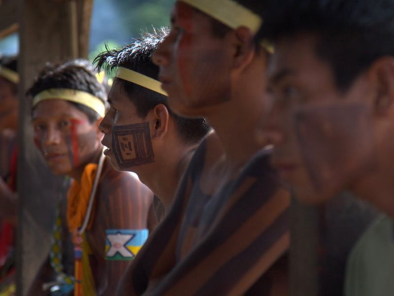 Stand in Solidarity with Brazil's Indigenous Rights Agency!